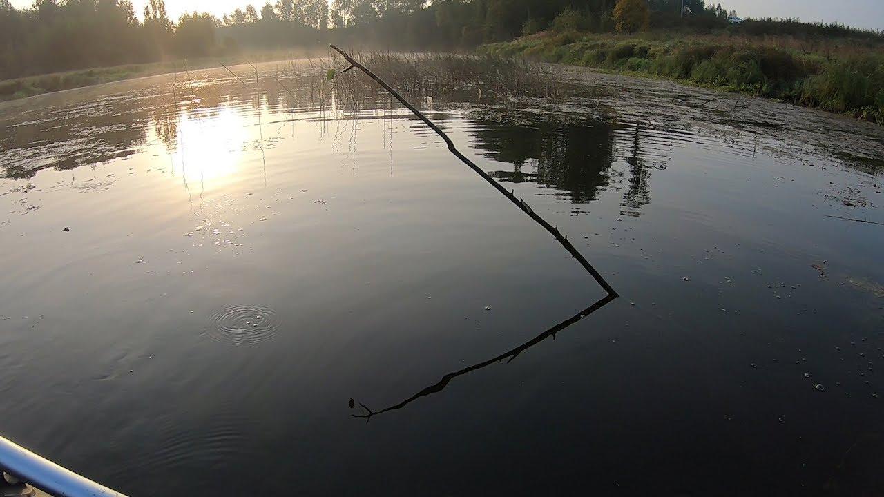 Рыбалка Осенью. Ловля Щуки на Поставуши и Спиннинг. Две рыбалки одним днем!