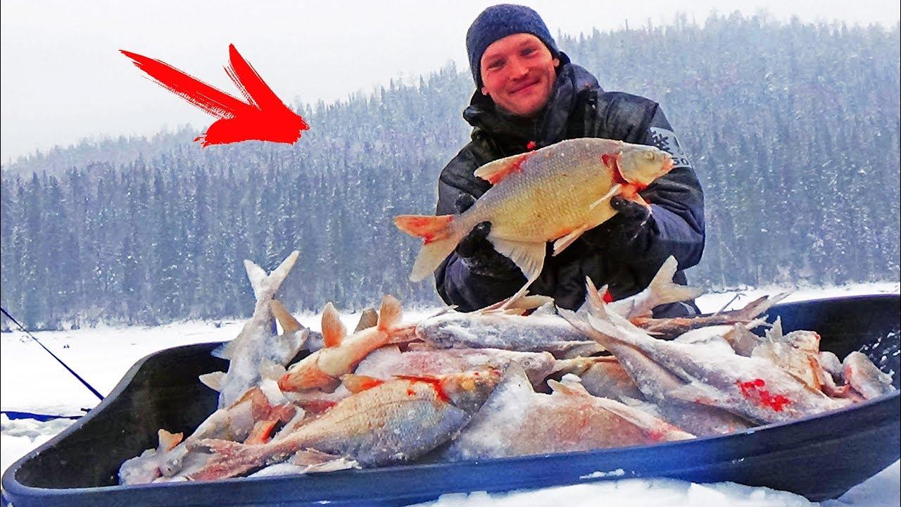 Они РВУТ ЛЕСКУ и РАЗГИБАЮТ КРЮЧКИ ! Зимняя рыбалка на безмотылку (чёртик) Косим леща