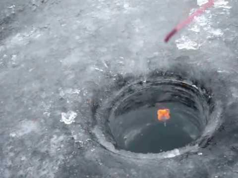 Зимняя рыбалка в Лопотово