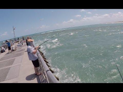 Florida Fishing Road Trip Day 1 — The Stuggles of Shore Fishing