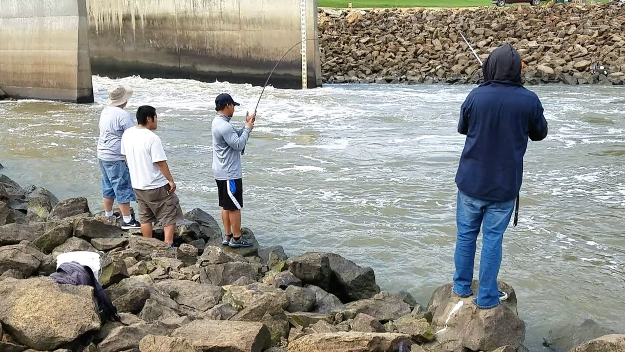 Striper Fishing in Spillway. EP 15