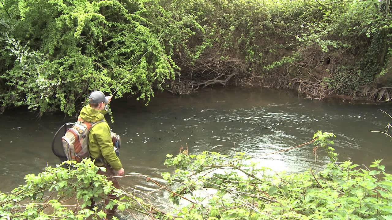 Fly Fishing Small UK Rivers for Big Trout —  The River Tone, Somerset