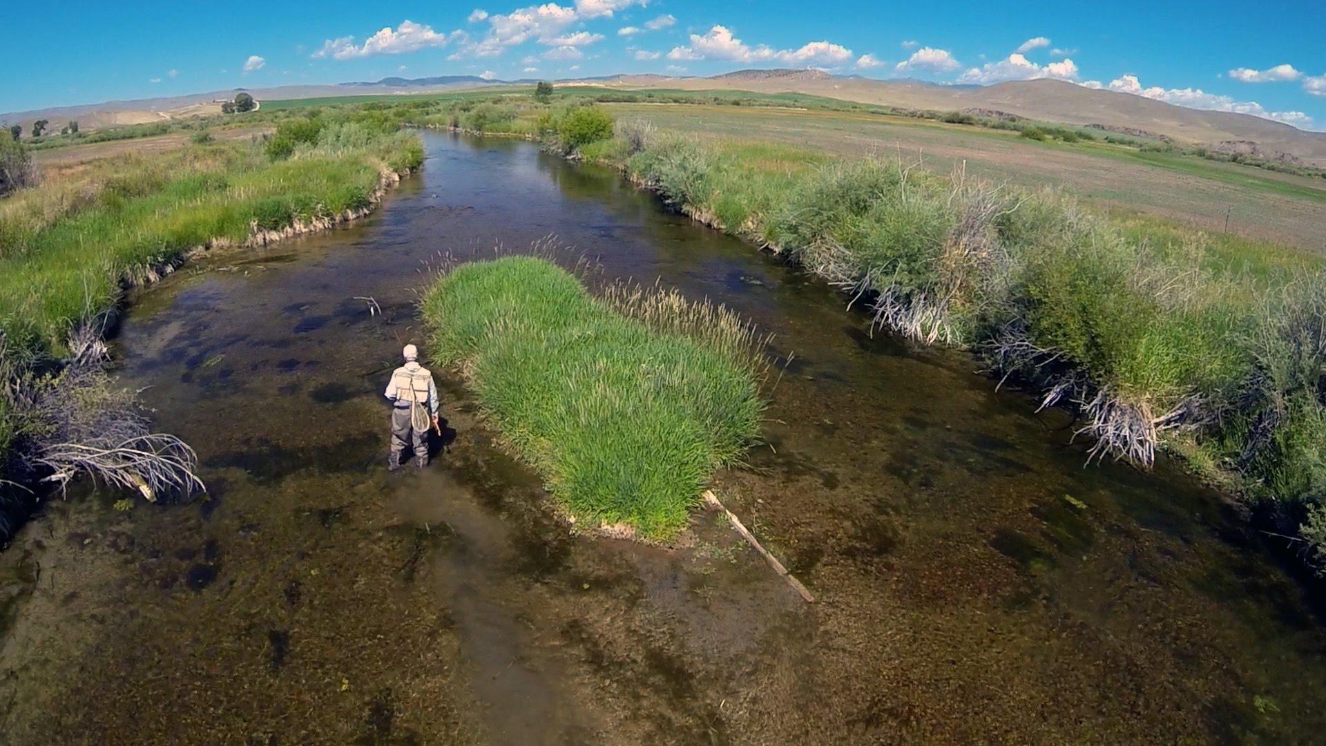 HATCH — BIG SKY PMDs — Montana Fly Fishing by Todd Moen