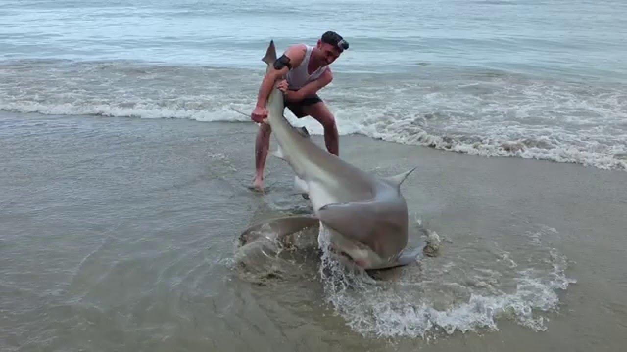 Land based Shark fishing NZ