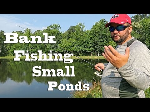 Bank Fishing — How to Fish Small Ponds in the Summer