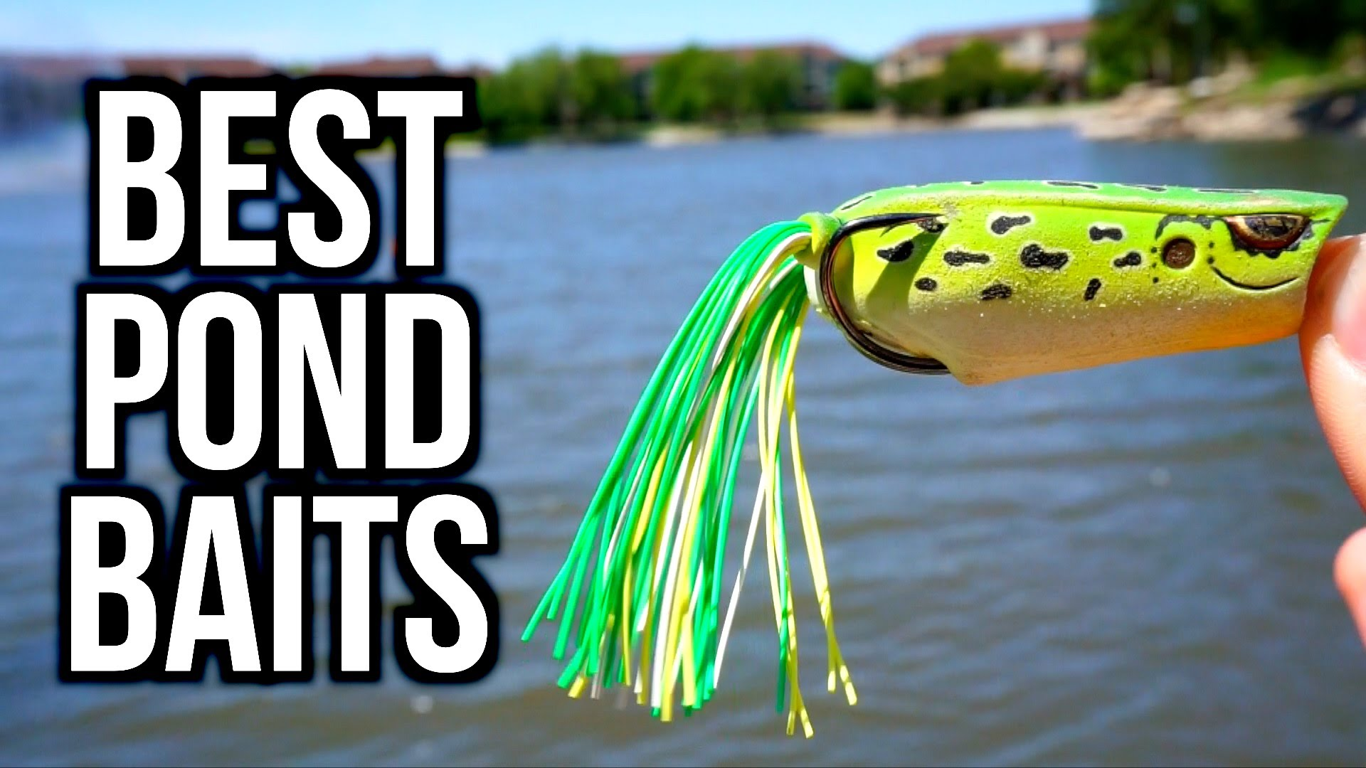 TOP 5 POND BASS FISHING BAITS — Bass Fishing Tips