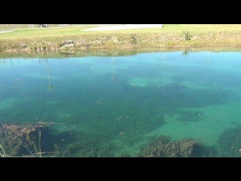 Super Secret Fishing Spot