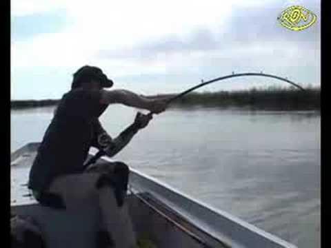 Невероятная рыбалка