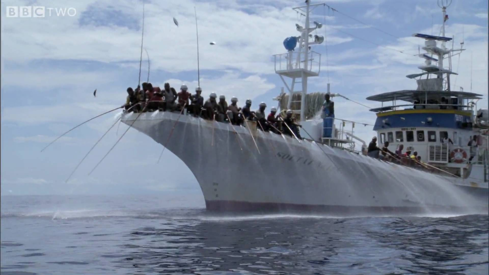 HD: Tuna Fishing — South Pacific — BBC Two