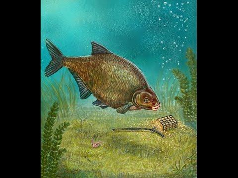 Рыбалка на Днепре на фидер или Лещ рыба моей мечты)))