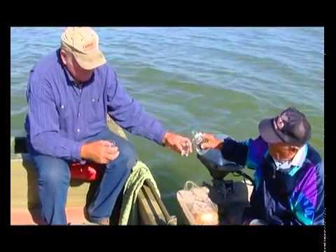 Рыбалка на Днепре в наше время.mp4