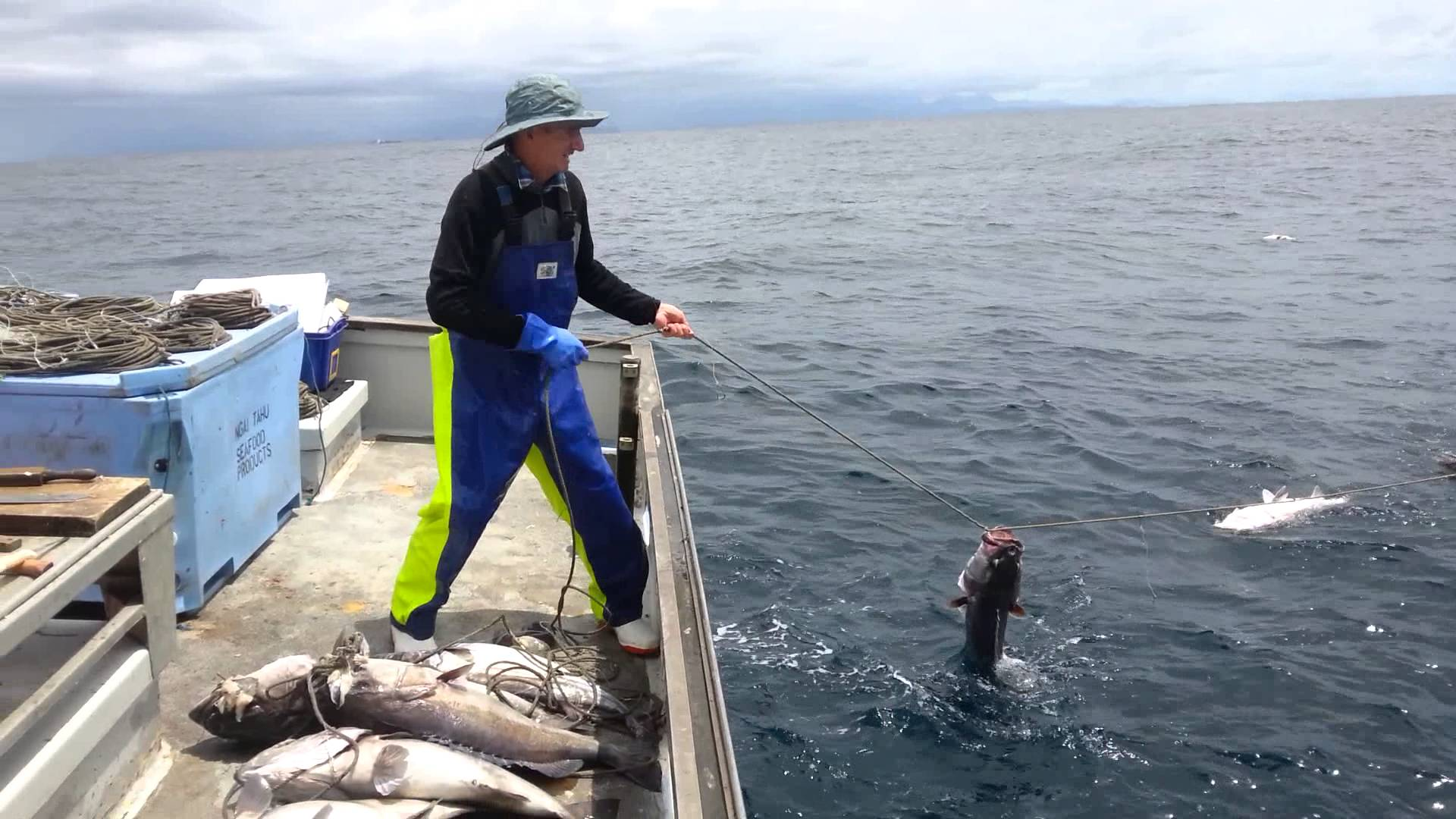 groper fishing