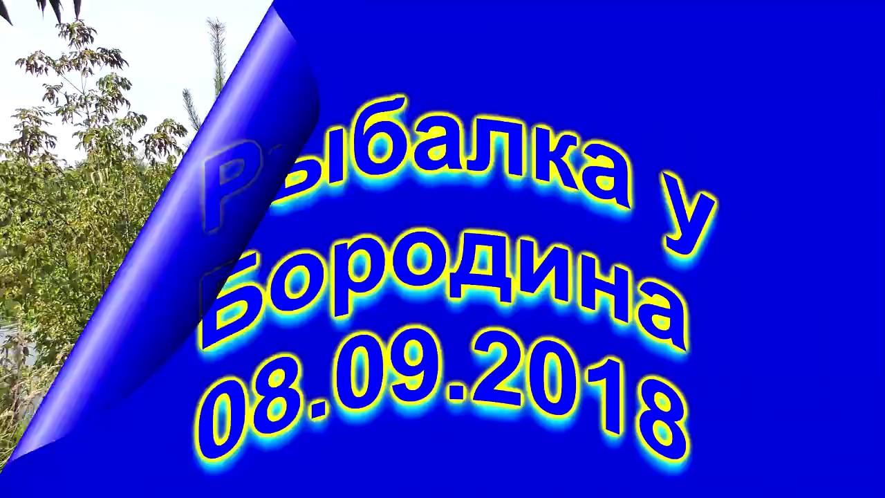 Рыбалка у Бородина 08 09 2018