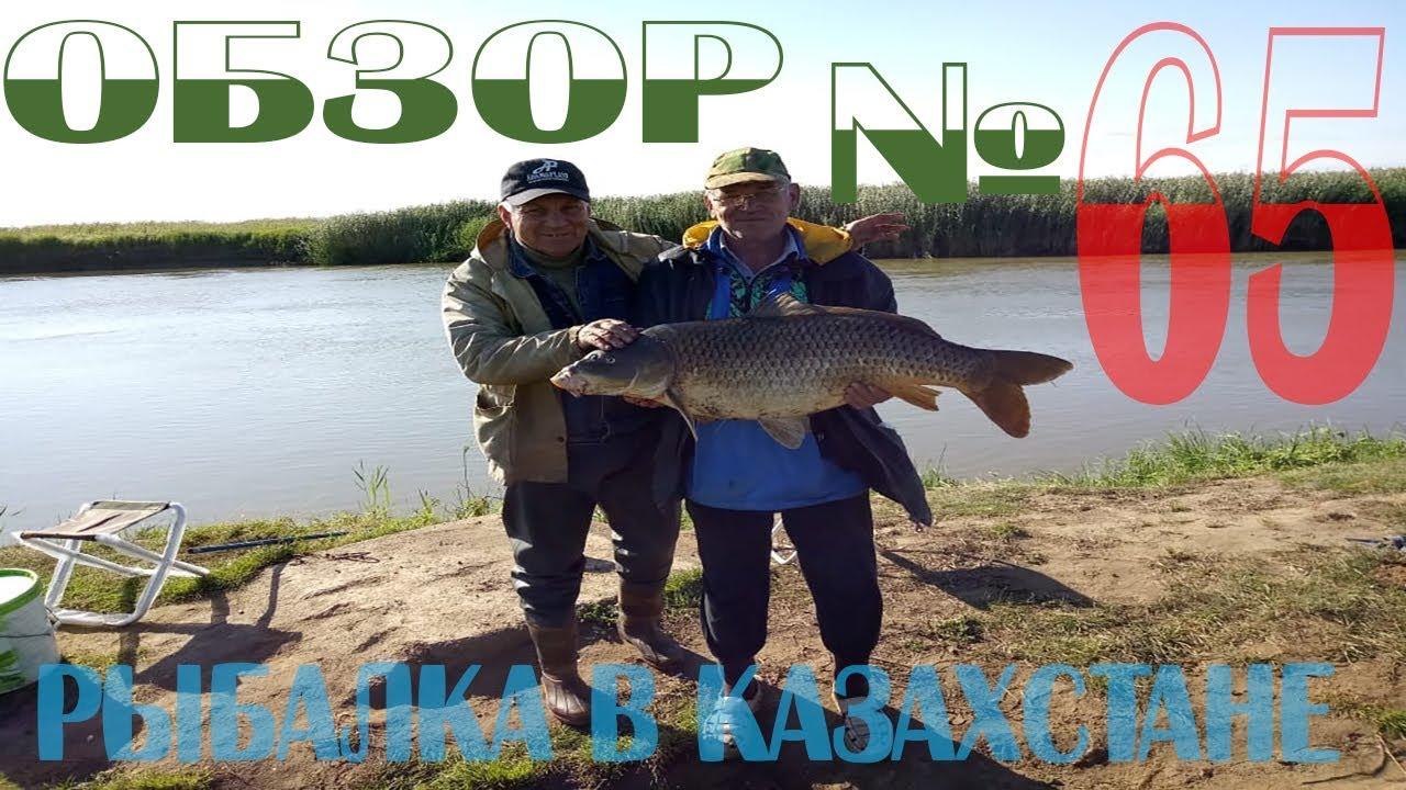 Рыбалка в Казахстане Обзор с рыбных мест №65 2018 Рыбалка в Астане и области