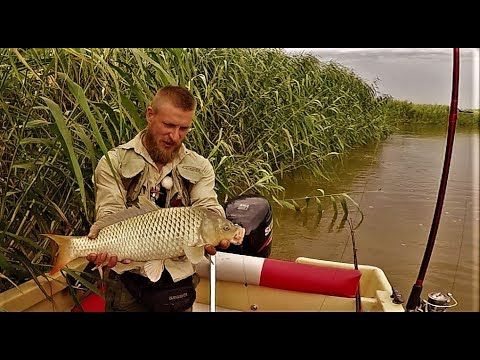 Настоящая Рыбалка. Простая Снасть На Сазана -Макуха И Кукуруза. Закидушка (Донка) .Часть 1.