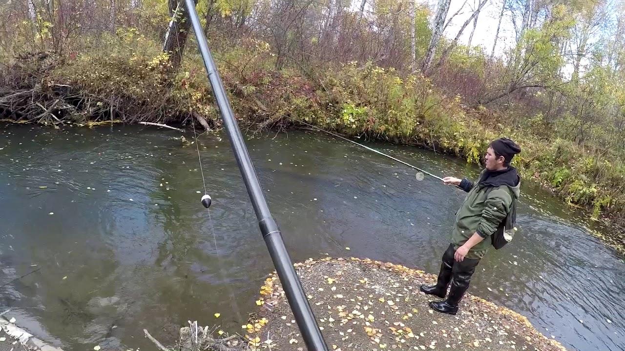 Ловля — Рыбалка на Хариуса ОСЕНЬ 2018 (малая речка ,,ЛИСТОПАД,,)