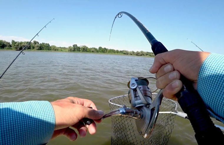 ВОТ ЭТО ПОРОСЕНОК КЛЮНУЛ ! Я таких еще не ловил ! Рыбалка летом на макуху.