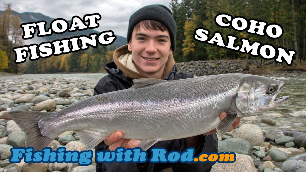 Float Fishing for Coho Salmon   Fishing with Rod
