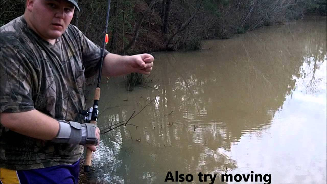 How to start fishing