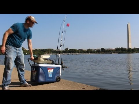Catfishing from the bank — Fishing from shore — Fishing from bank