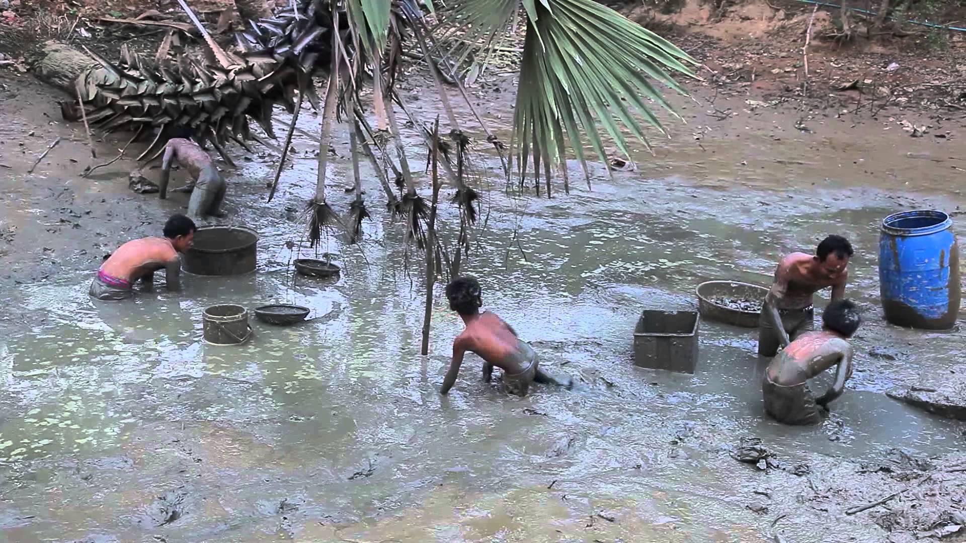 Камбоджа.Рыбалка.