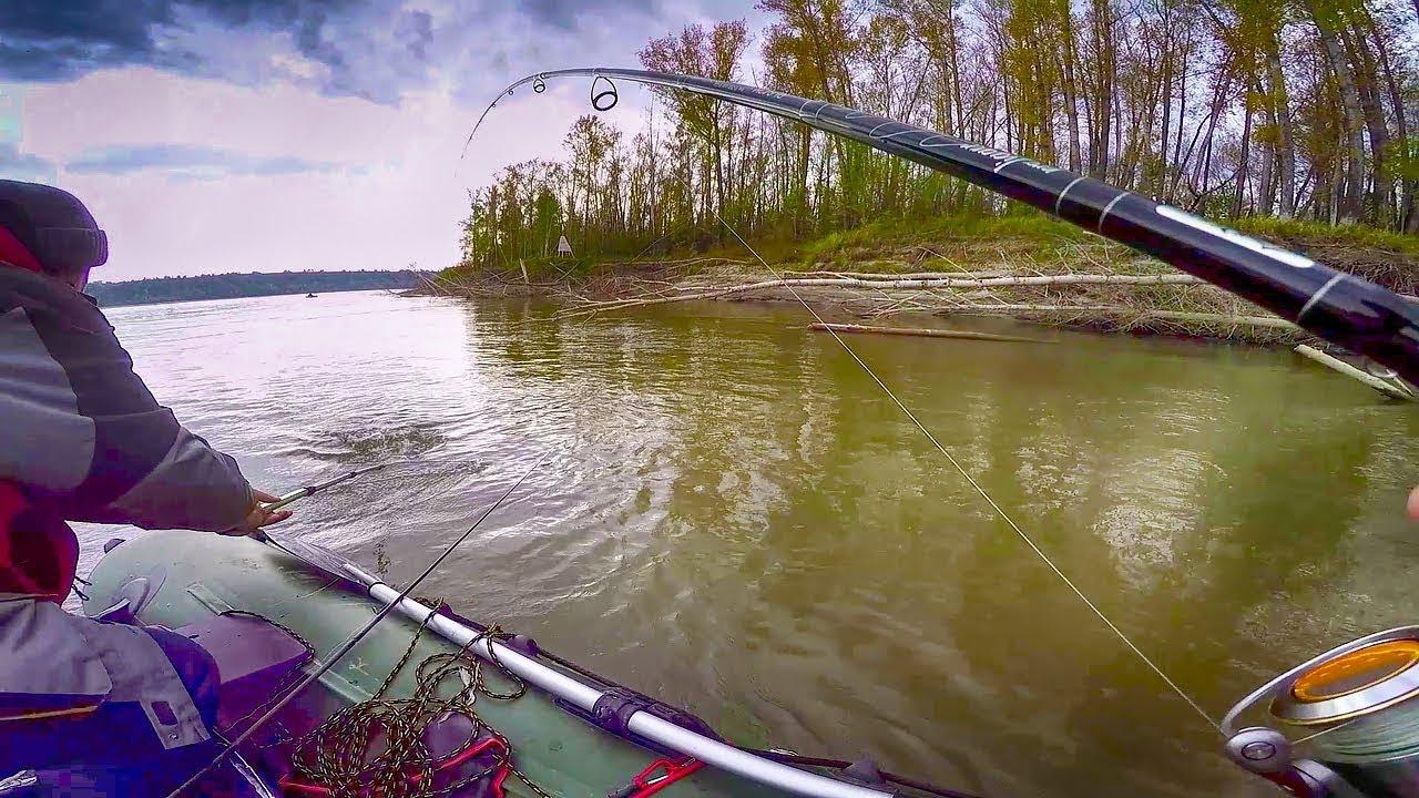 Перехитрить желтобокого ! Рыбалка в ломовом коряжнике .Рыбалка осень 2018