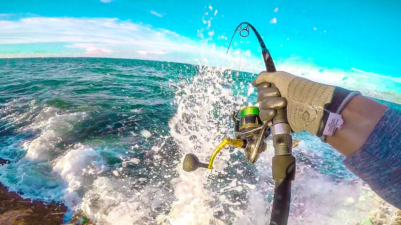 fish SNAPS fishing rod — new record fish caught from land