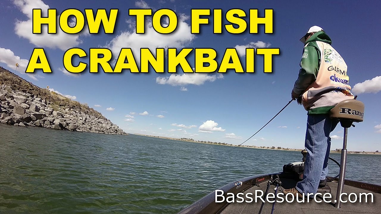How To Fish A Crankbait for Monster Bass!   Bass Fishing Techniques