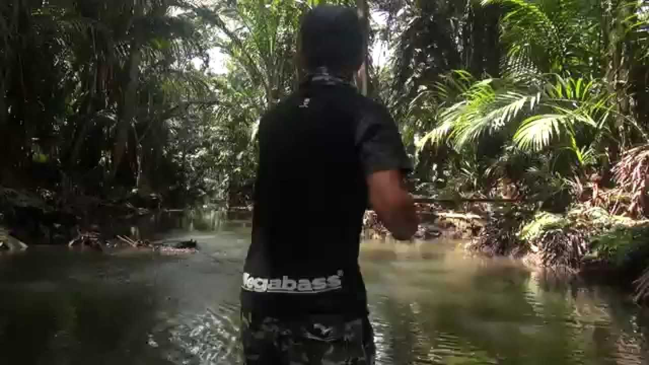 Papuan Black Bass fishing 2014 Part-1with Gong Lei