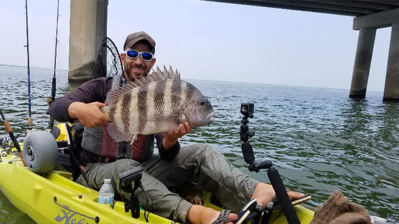BRIDGE MONSTERS! — Jumbo Sheepshead Fishing & A SURPRISE CATCH!