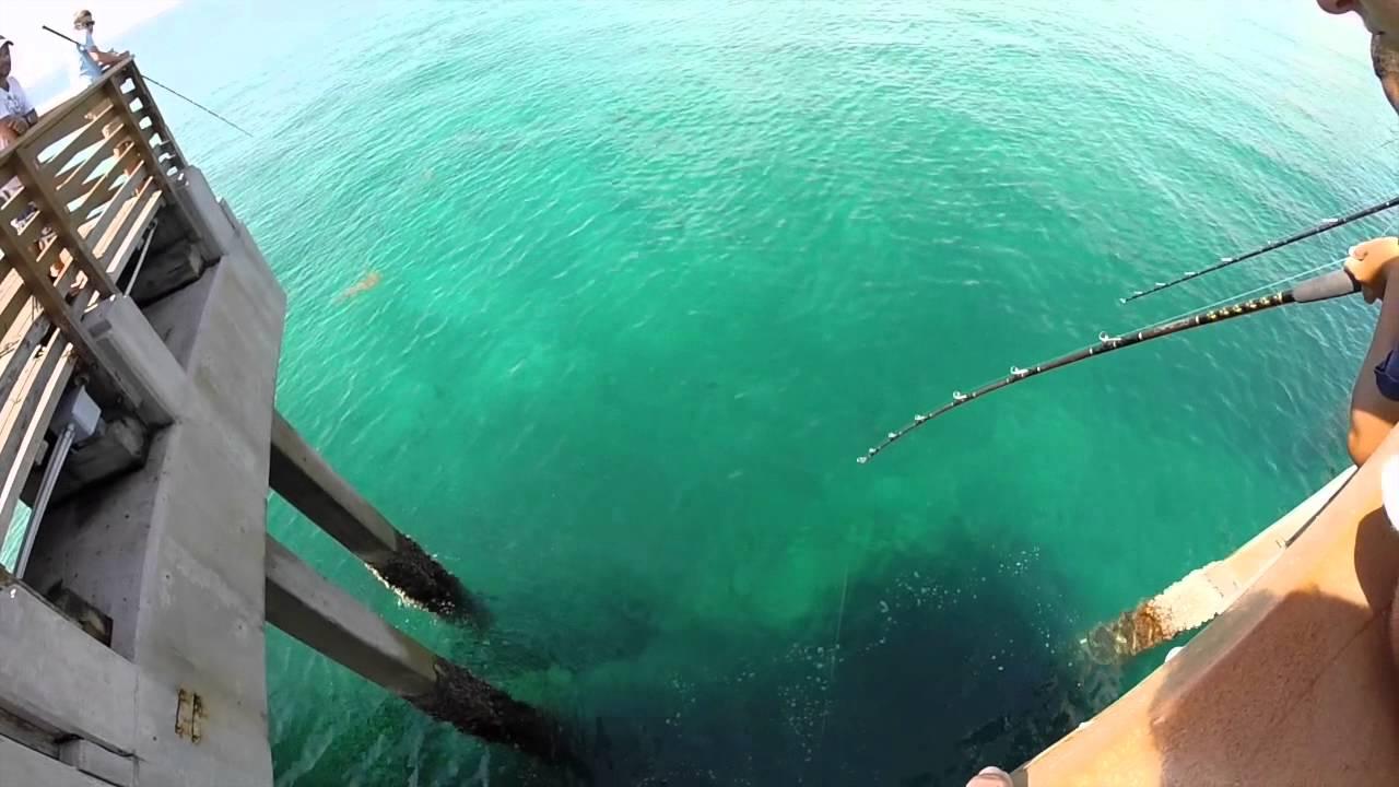 Snook Fishing Juno Beach Pier! Summer 2K15!