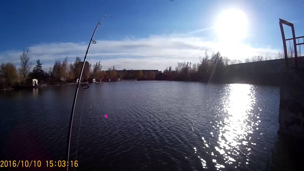 Форель на спиннинг(платник рыбалка у Бородина)
