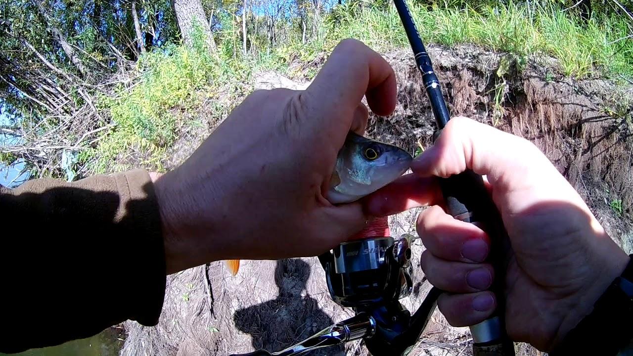 День 3, 4 и 5  Рыбалка на спиннинг в г  Новосибирск  Ловля щуки, судака, окуня