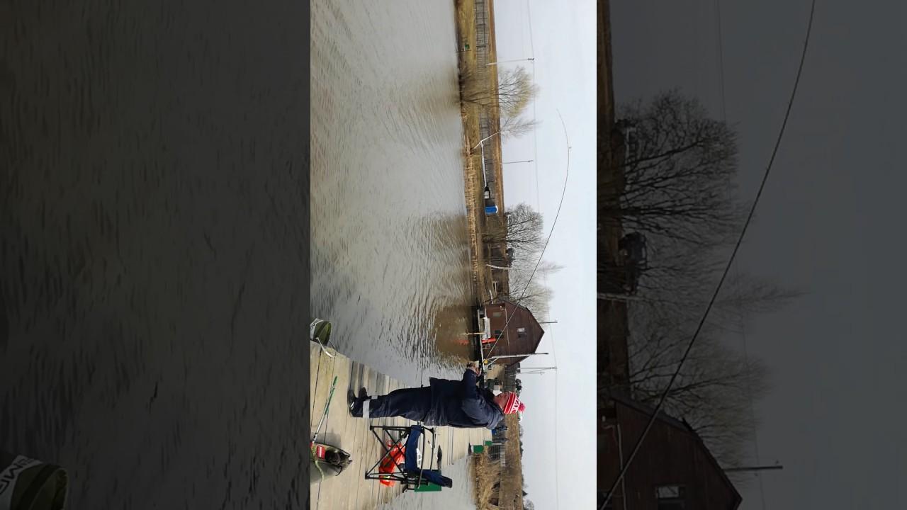 Рыбалка у Бородина в юсупово 6 апреля 2017