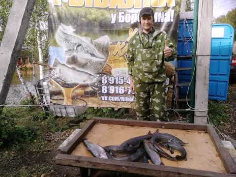 Рыбалка у Бородина….