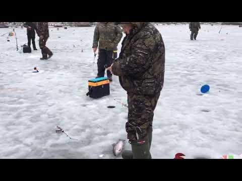 Рыбалка у Бородина!