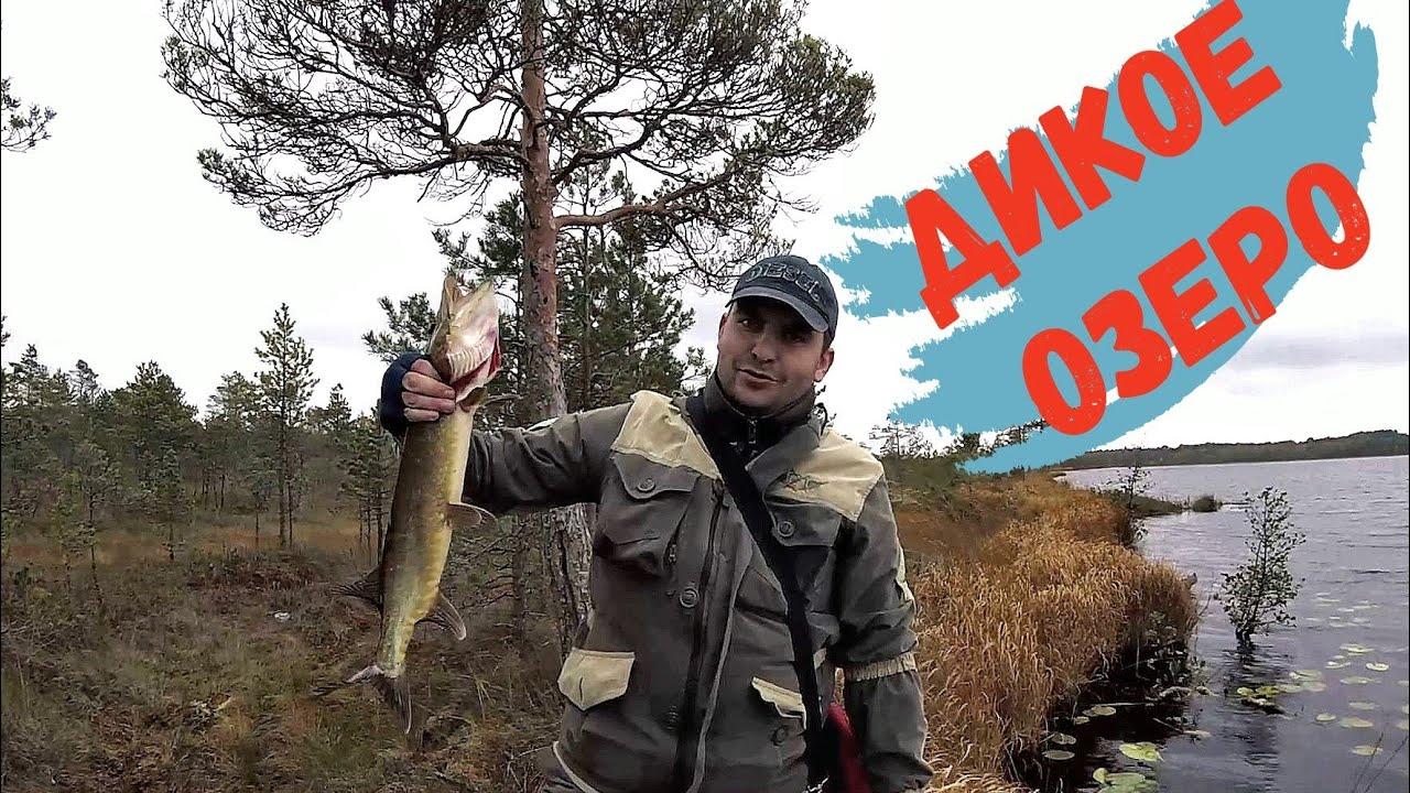 Рыбалка на диком озере.