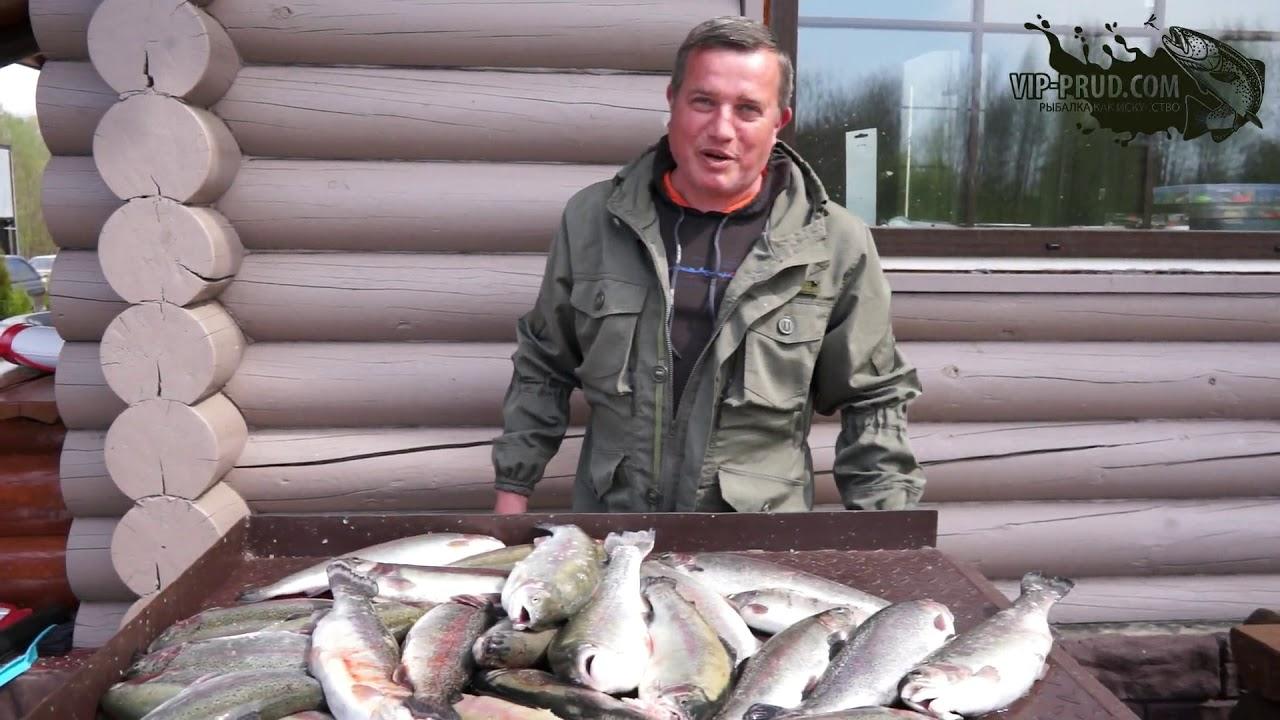 Платная рыбалка в Подмосковье.Платная рыбалка в Московской области. Платный пруд.