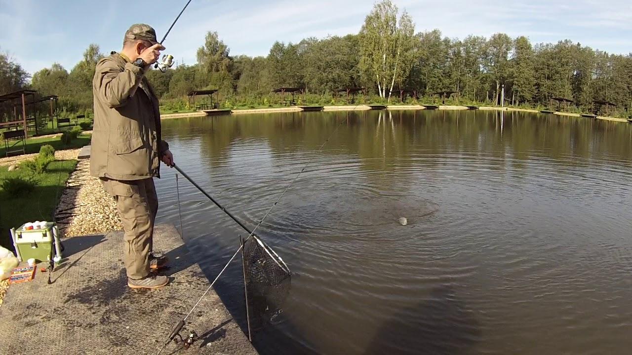 Платная рыбалка в Московской области. Платные пруды. Рыбалка в Москве.