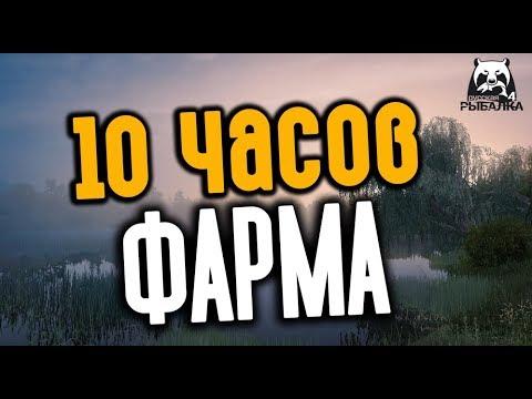 РУССКАЯ РЫБАЛКА 4. 10 Часов фарма. Медвежка + Сура