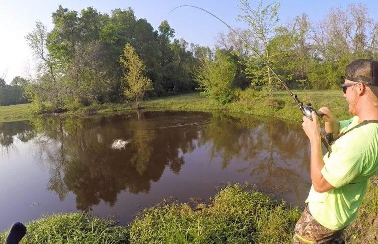Bass Fishing Farm Ponds with Outlaw