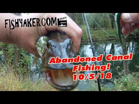 Evening at the Canal! — Pennsylvania Abandoned Canal Fishing, 10/5/18