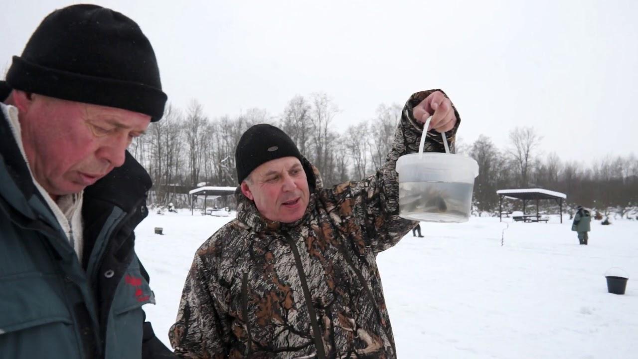 Ловля форели зимой. Ловля форели. Ловля форели на платнике.