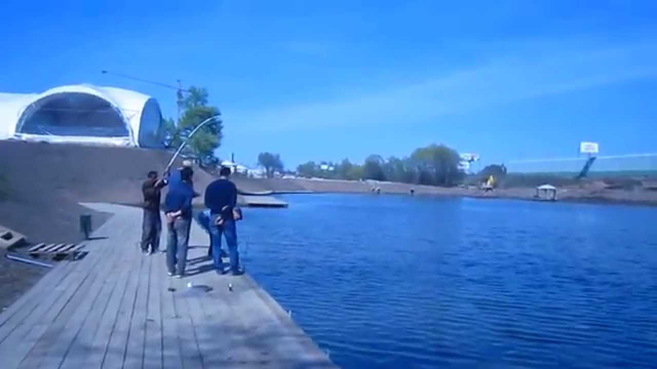 Рыбалка. г.Видное