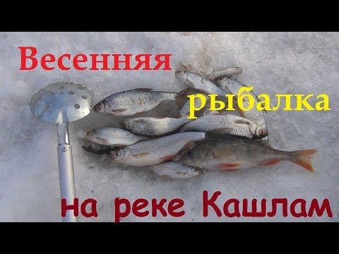 Рыбалка в Сибири # 50. Весенняя рыбалка на реке Кашлам. 31 марта 2018 года.