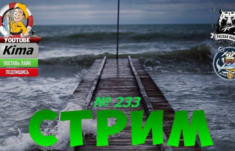 Русская рыбалка 4  — № 233  —  «ЗА РЫБОЙ ПО ВОДОЁМАМ »  —  Kima STREAM  — (BANDA 77)