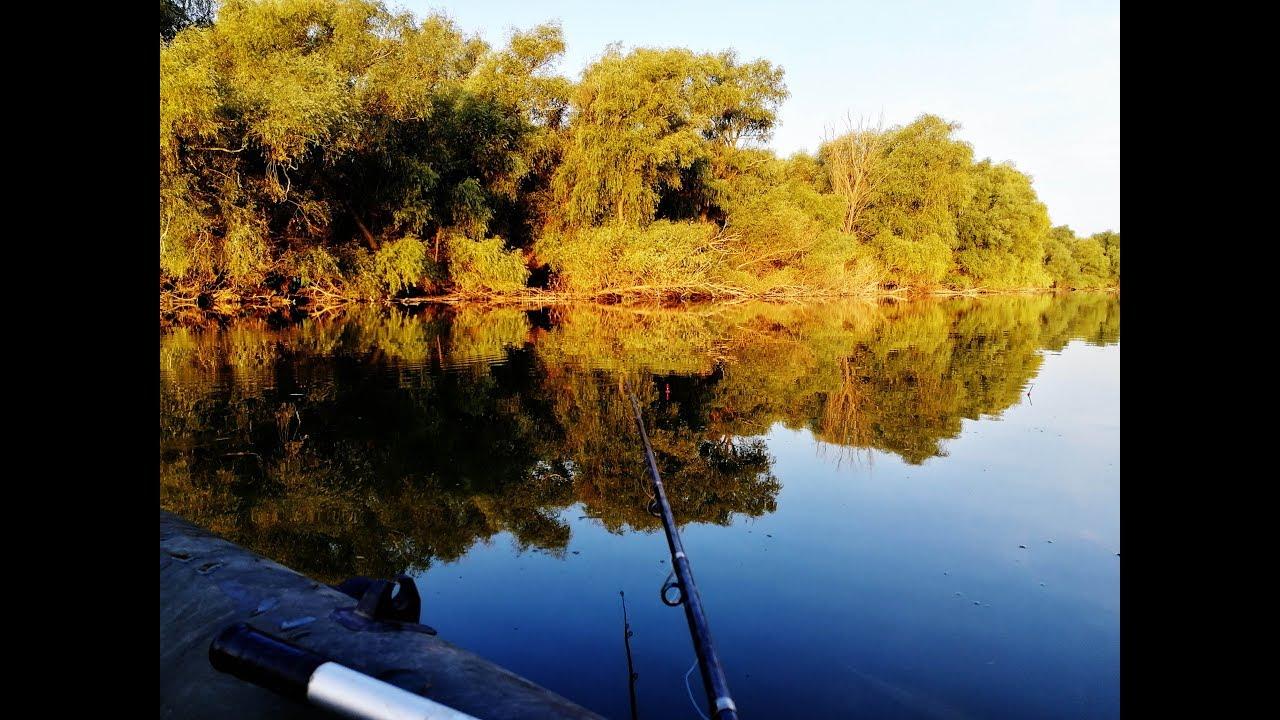 Рыбалка осенью 2018 Секреты ловли карася И карпа  в октябре