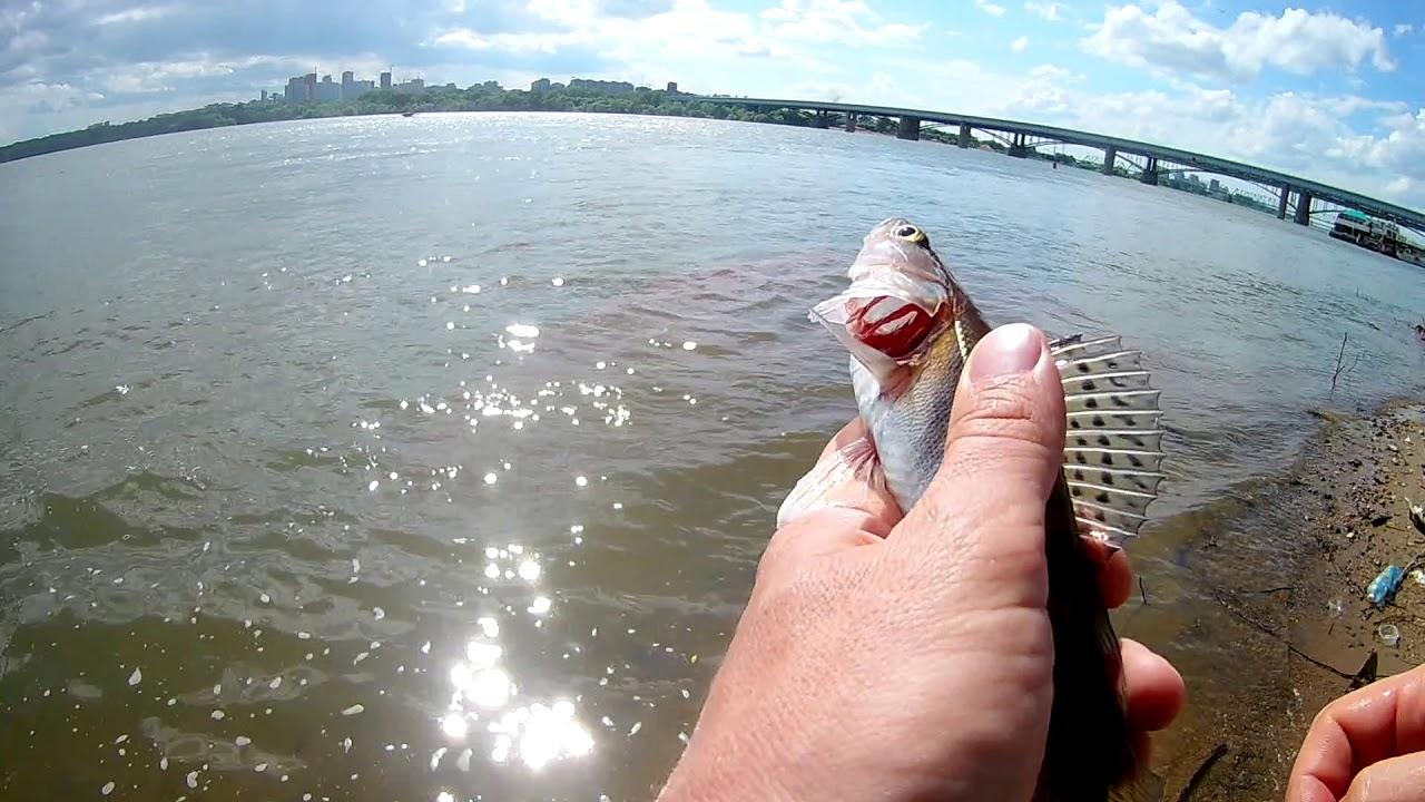 Рыбалка на спиннинг, щука, язь, окунь, судак  Новосибирск, набережная
