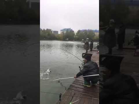Рыбалка у Бородина(1)