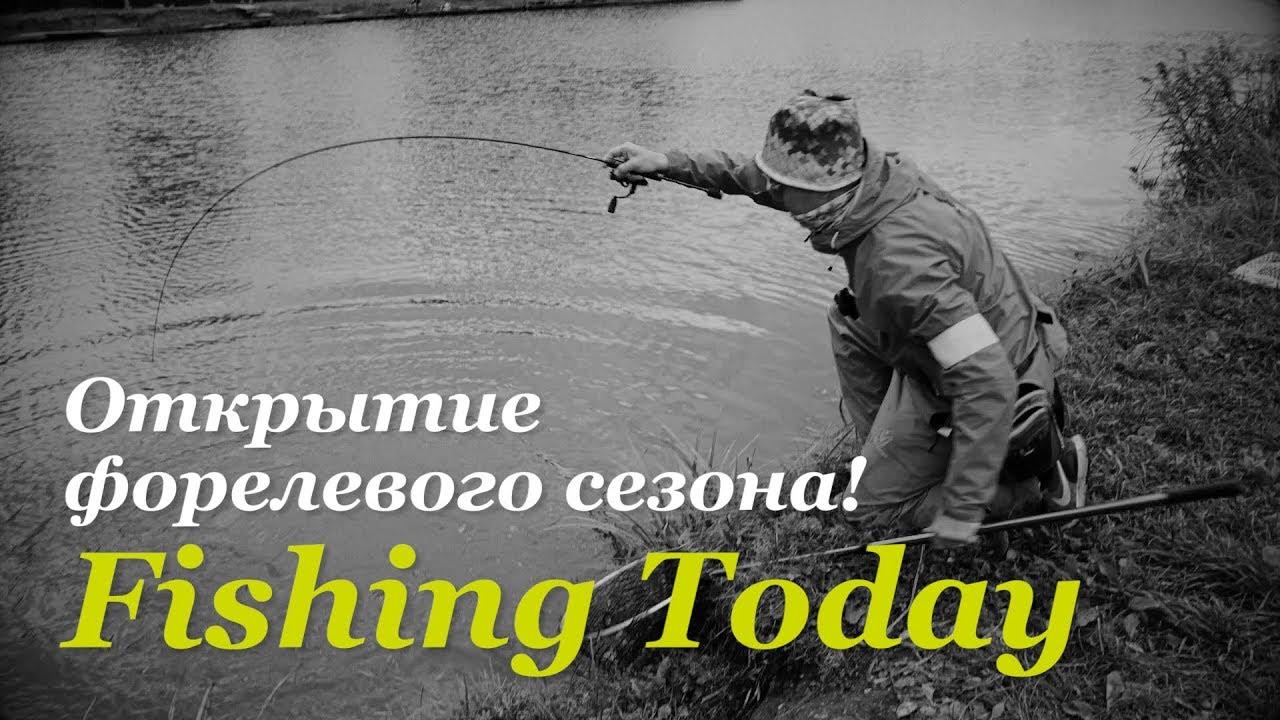 Открытие форелевого сезона — Fishing Today
